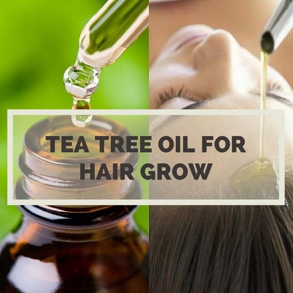 Tea Tree Oil for Hair Grow