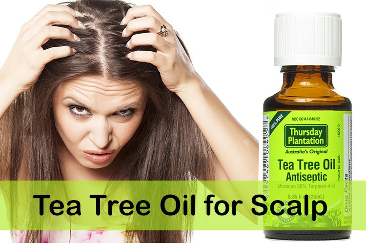 Image result for tea tree oil for itchy scalp