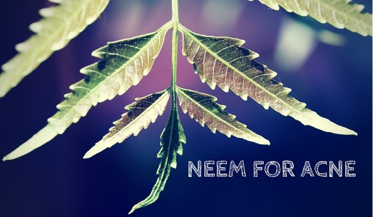 neem for acne