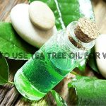 How To Use Tea Tree Oil To Get Rid Of Warts