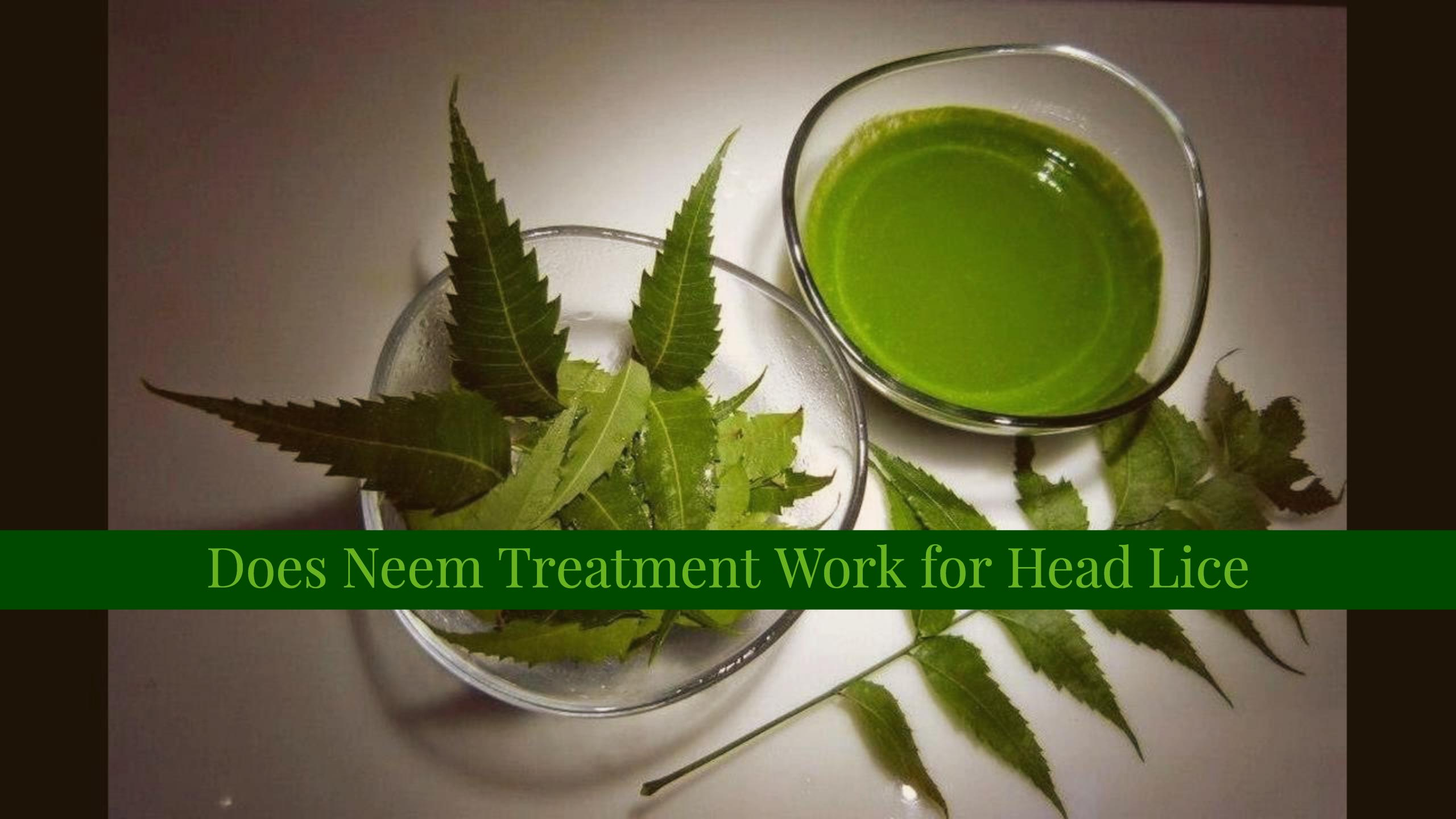 Does neem treatment work for head lice Can head lice be spread in a swimming pool