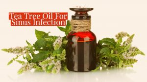 Tea Tree Oil For Sinus Infection