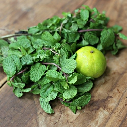 Mint With Lemon For Dark Circles