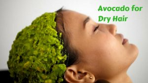 Is Avocado Useful for Dry Hair