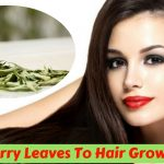 11 Natural Ways To Use Curry Leaves To Increase The Hair Growth