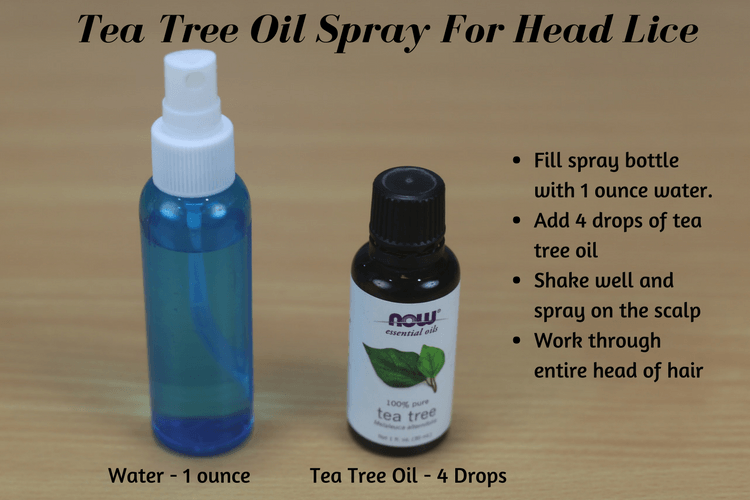 11 effective ways to use tea tree oil for head lice, Skeleton