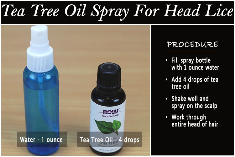 2  Tea Tree Oil Spray. 11 Effective Ways to Use Tea Tree Oil for Head Lice