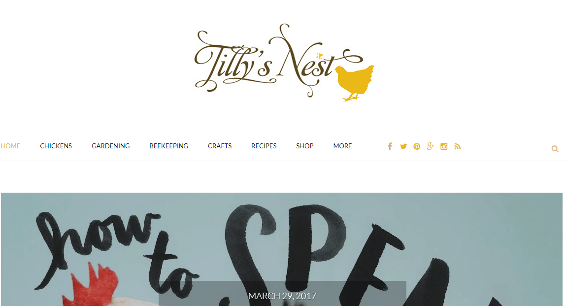 Tilly's Nest