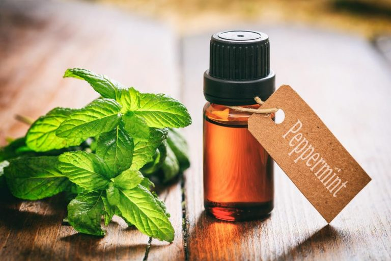 peppermint oil for tooth abscess