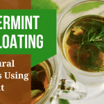 Peppermint For Bloating